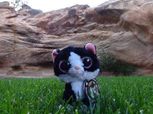 Angel's rest at Best Friends Animal Society - Utah