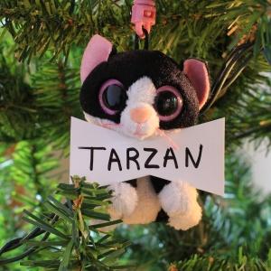 Tarzan Dobson