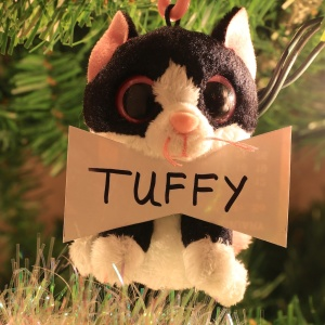 Tuffy Chase