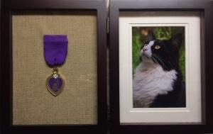 Tuxedo Stan's Hudson Heart Award