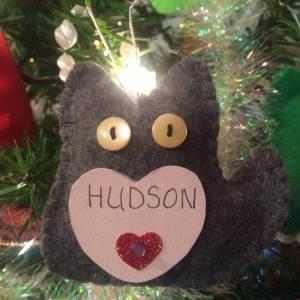Hudson MacKenzie
