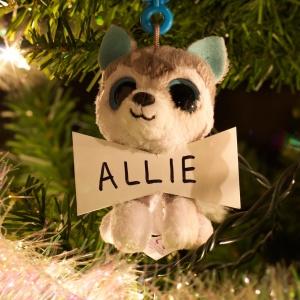 Allie Ryan