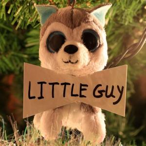 Little Guy Fletcher