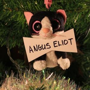 Angus Eliot (Kathie's cat of a lifetime)
