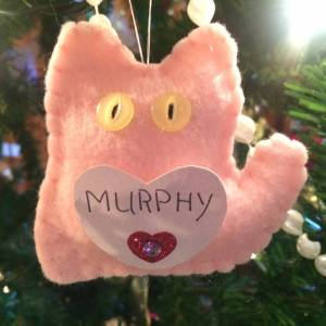 Murphy Wilson