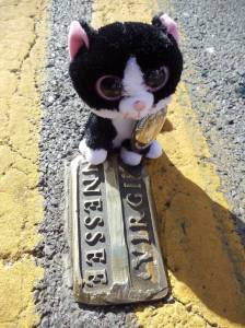 Minion Bernadette made it to Bristol's iconic State Street-- where the state lines of Virginia and Tennessee meet