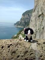Capri Island Coastline