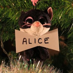 Alice Taaffe