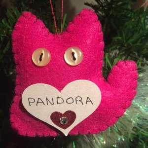 Pandora Chickosky