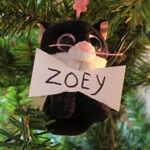 Zoey McBeigh