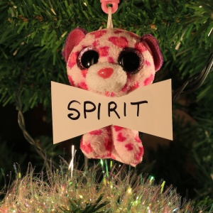 Spirit Dreher