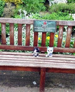 Hanging out on a bench in Scotland