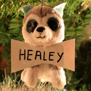 Healey White