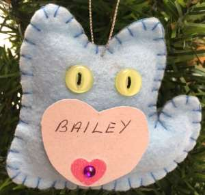 Bailey Leslie