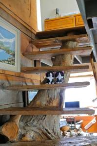 Are we staying in a tree house?