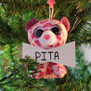 Pita Inkster-Smith