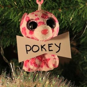 Pokey Taaffe