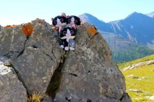 First peak!  (Highwood Pass)