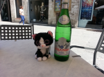 A well-needed drink of water for Tuxedo Janelle, after a morning hiking in the hilltown of Perugia