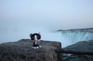Stan at Niagara Falls! (Ontario, Canada)