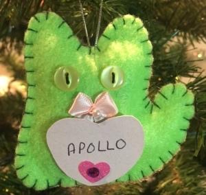 Apollo Gurr
