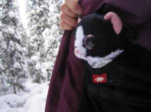 Albert stays warm in spite of the winter weather
