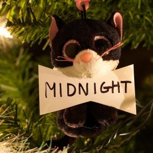 Midnight Nikodem