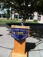 Minion Aggie Ready to Speak!