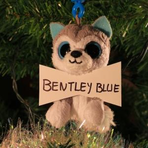 Bentley Blue Dreher (Angus' best friend)