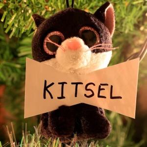 Kitsel Alexander