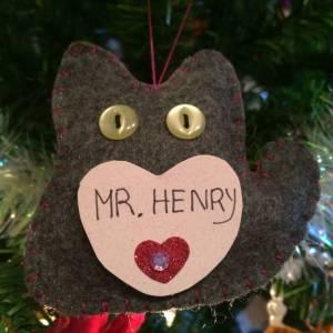 Mr. Henry Holcomb