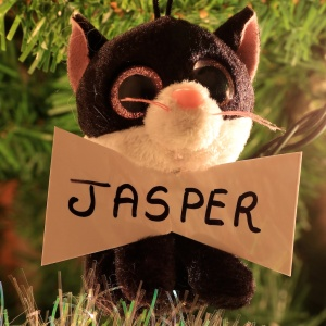 Jasper Chase