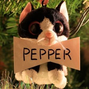 Pepper Tisdelle