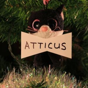 Atticus Dreher