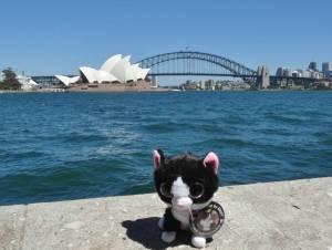 Opera house and bridge (Sydney, Australia) by Dan Mack