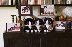 Three minions reunited in Tuxedo shrine