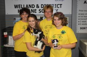 Stan with Nancy Thomas, Laura Harte and other volunteers at the Cat Adoption Centre in our local mall (Ontario, Canada)