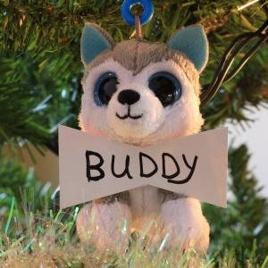 Buddy Holland