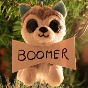 Boomer Chase