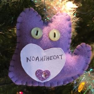 Noahthecat Lenz