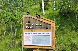 Cat Creek!