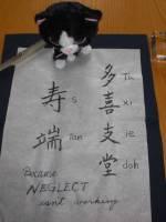 """Tuxedo Stan"" in Japanese Calligraphy"