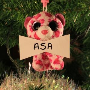 ASA Dreher (FIV+ kitty)