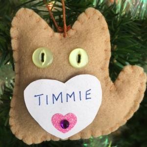 Timmie Morgan