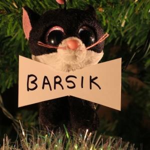 Barsik Kogan