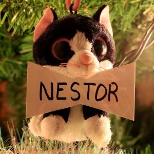 Nestor Alexander