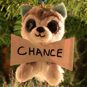 Chance Stanton
