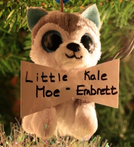 Little Moe-Kale Embrett Cochrane