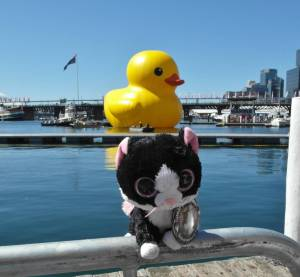 Giant rubber duck (Sydney, Australia) by Dan Mack