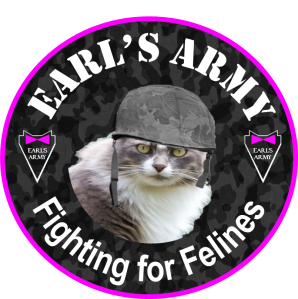 Earls army button